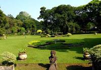 Kebun Raya Bogor 236