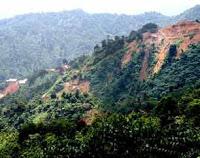 Hasil Kajian BPD Ungkap Wilayah Rawan Bencana 233