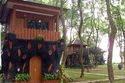 Taman Wisata Mekarsari 236