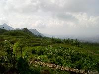 Puluhan Vila Kawasan Desa Sukadamai Tanpa IMB 233