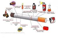 Kota Bogor Kawasan Tanpa Asap Rokok 234