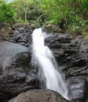 Studi EHRA: Septitank Warga Bantaran Kali Bisa Cemari Sungai Ciliwung 236