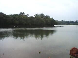 Perahu Bebek Situ Kemuning Digemari Pengunjung 234