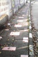 Petugas Kebersihan Lalai Warga Buang Sampah Sembarangan 239