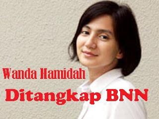 Kakak Wanda Hamidah Kecam Pers 229
