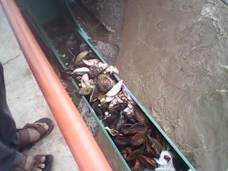 Petugas Kebersihan Lalai Warga Buang Sampah Sembarangan 236