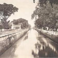 Air Sungai Ciliwung Mengadung Zat Berbahaya 238