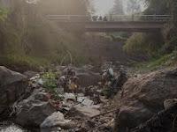 Air Sungai Ciliwung Mengadung Zat Berbahaya 236
