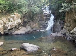 Air Sungai Ciliwung Mengadung Zat Berbahaya 237