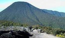 Ditemukan Jenazah Di Hutan Gunung Salak 236