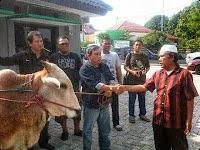Sekber Wartawan Bogor Berbagi Daging Qurban 235