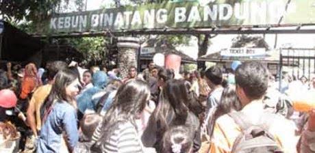 Warga Serbu Bandung Zoo 231