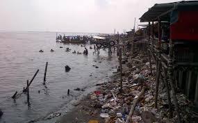 Perairan Indonesia Tercemar 235
