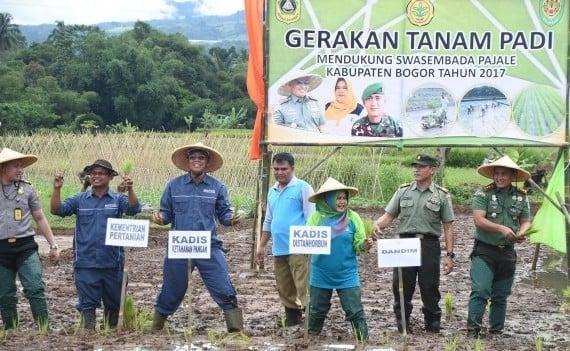 Kabupaten Bogor Wujudkan Swasembada Pangan 231