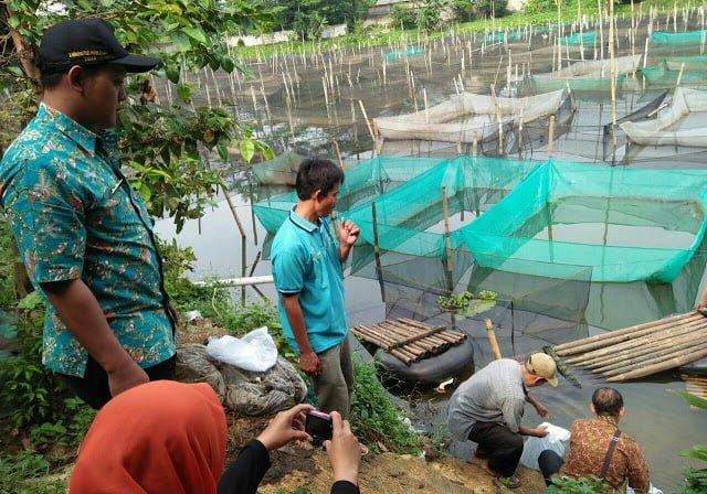 Pemkab Bogor Tebar Benih Ikan Lagi 235
