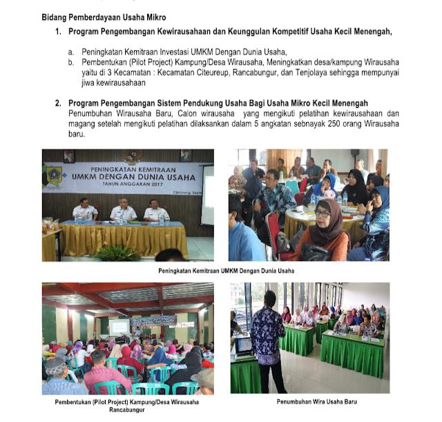 Kinerja Dinas Koperasi UKM Kabupaten Bogor Tahun 2017 239