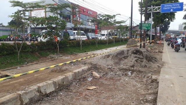 DPRD Soroti Penebangan Pohon 235